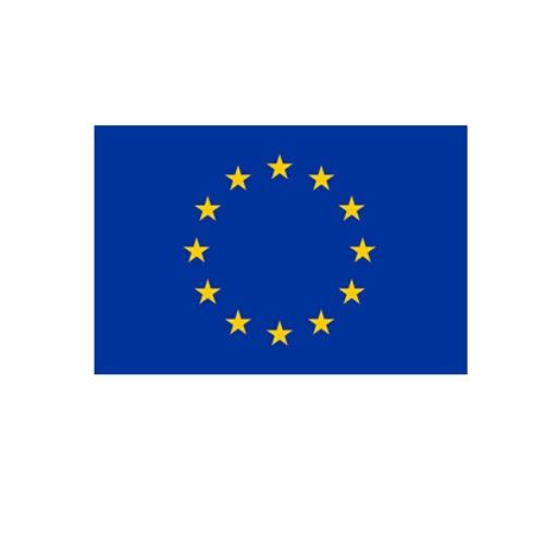 logo EU flaga biała